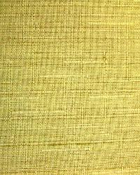 Tonto Antique Gold by