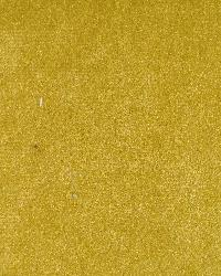 Prima Gold by