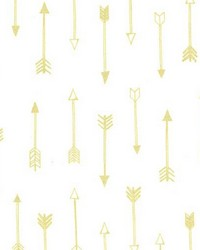 Arrows Brightwhite by