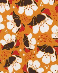 Gardenia Orange by