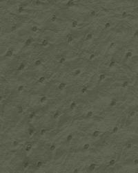 Emu Slate by