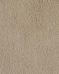 Vogue Taupe by