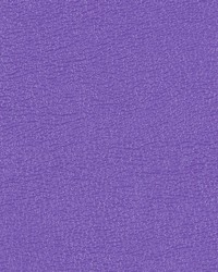 Allsport Bright Violet Vinyl by