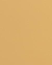 Knockout Golden Tan Vinyl by