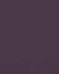 Knockout Purple Grey Vinyl by