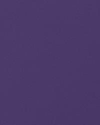 Knockout Purple Vinyl by