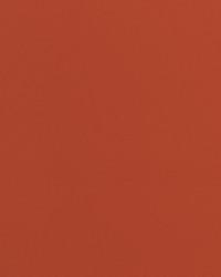 Knockout Terracotta Vinyl by