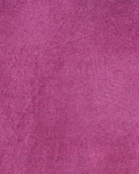 Spritz Fuchsia 26 by