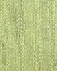 Toltec Kiwi by