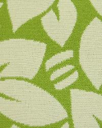 Pacific Outdoor Indoor Norbar Fabric