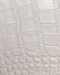 Big Crocodile White by