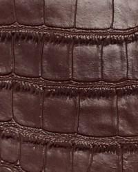 Big Crocodile Light Brown by