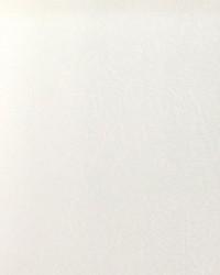 Blazer II Bl 100 White Vinyl by