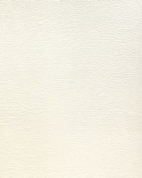 Blazer II Bl 102 Light Neutral Vinyl by