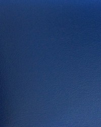 Blazer II Bl 115 Pacific Blue Vinyl by