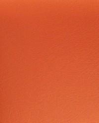 Blazer II Bl 120 Orange Vinyl by
