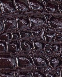 Croco Leather Dark Burgundy by