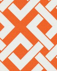 Orange Trellis Diamond Fabric  Boxed In Tangerine Tango