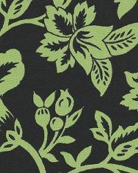 Flower Show Black Lime by  In Stock