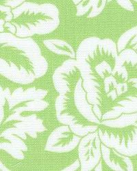Flower Show Lime by  In Stock
