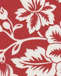 Flower Show Red by  In Stock