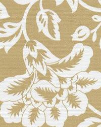 Flower Show Tan White by  In Stock