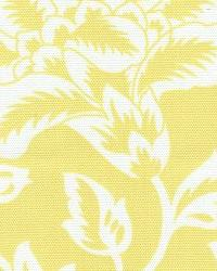 Flower Show Yellow by  In Stock