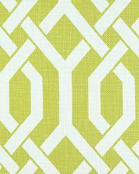 Green Trellis Diamond Fabric  Slick Chartreuse