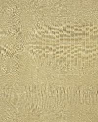 Pindler and Pindler 1003 Lizardo Dune Fabric