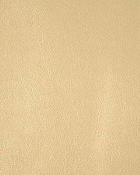 Pindler and Pindler 1012 Barstow Doe Fabric