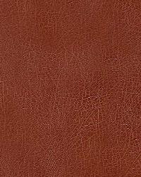 Pindler and Pindler 1012 Barstow Sienna Fabric