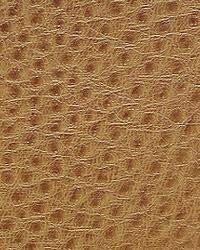 Pindler and Pindler 1014 Outback Birch Fabric