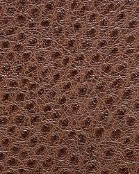 Pindler and Pindler 1014 Outback Briar Fabric