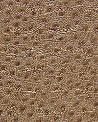 Pindler and Pindler 1014 Outback Cobblestone Fabric