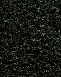 Pindler and Pindler 1014 Outback Ebony Fabric