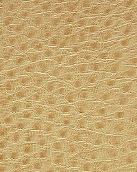 Pindler and Pindler 1014 Outback Flax Fabric