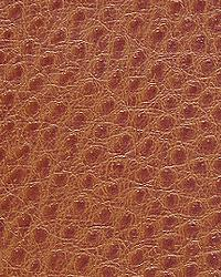 Pindler and Pindler 1014 Outback Rust Fabric