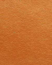 Pindler and Pindler 1015 Blythe Bronze Fabric