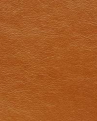 Pindler and Pindler 1015 Blythe Rust Fabric