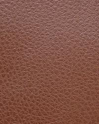 Pindler and Pindler 1016 Rustico Cocoa Fabric