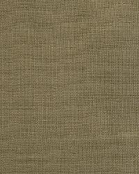 Pindler and Pindler 1476 Eternity Aloe Fabric