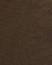 Pindler and Pindler 1476 Eternity Earth Fabric