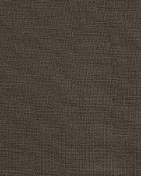 Pindler and Pindler 1476 Eternity Gunmetal Fabric