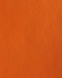 Galaxy Orange by