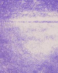 Wet Look Purple by