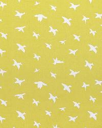 Bird Silhouette Saffron White by