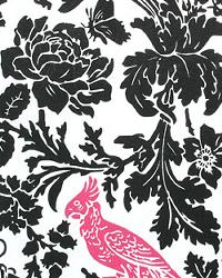 Black Birds Fabric  Barber Black Candy Pink