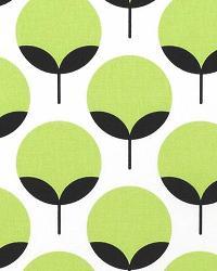 Green Funky Fabric  Caroline Kiwi Charcoal