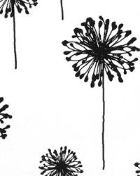 Black Medium Print Floral Fabric  Dandelion White Black