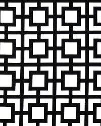 Black Trellis Diamond Fabric  GiGi Black